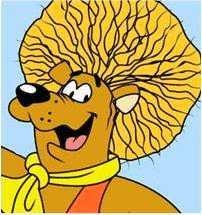 Hairbear