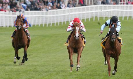 Horse-Racing---Bet-Chroni-001