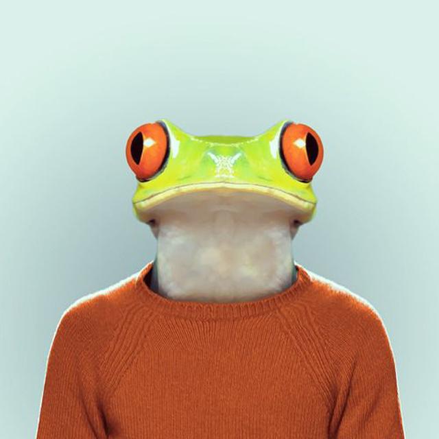 Fashion-Zoo-Animals12