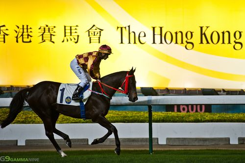 Hong-kong-jockey-club