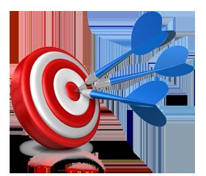 Target-300