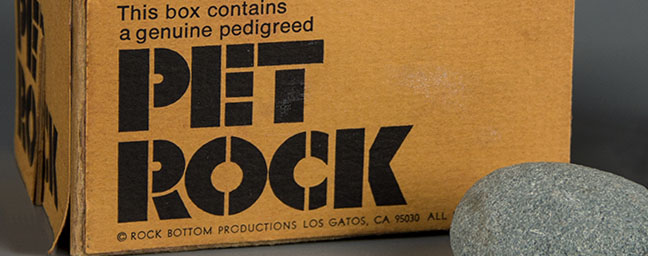Pet Rock prototype, 1975, Courtesy of The Strong, Rochester, New York