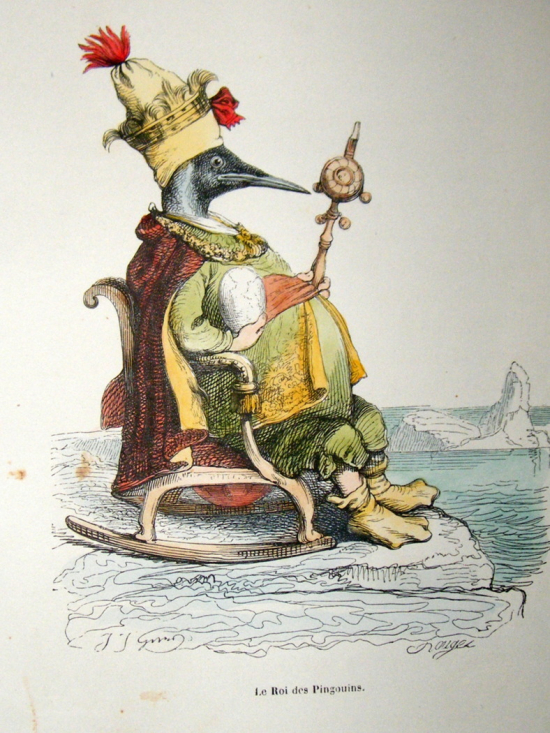 Grandville-des-animaux-1842-hand-col-print.-royal-penguin-bird-[2]-53992-p